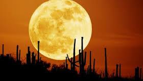 bulan1